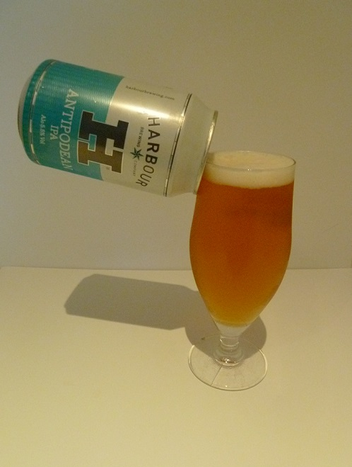 Harbour IPA (can on glass)